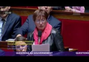 ArjoWiggins : la question de Marietta Karamanli