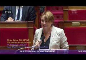 Situation dans les urgences de la Sarthe – Question de Sylvie Tolmont